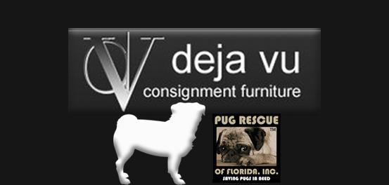Adoption Event   Deja Vu Consignment Furniture St Pete At 1601 34th St N,  Saint Petersburg, Florida 33713 5440