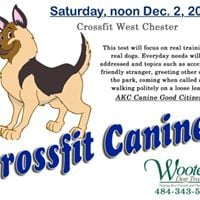 CrossFit Canines