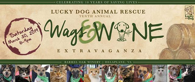 Lucky Dog Animal Rescues 10th Annual Wags & Wine Extravaganza