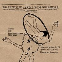Trapeze Plus Aerial Hoop Workshops For All Levels