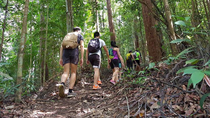Y Treks Gunung Pulai (7 Apr 2018)