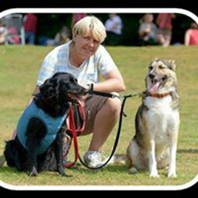 The Canine Hub