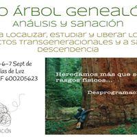 Curso rbol Genealgico Anlisis y Sanacin