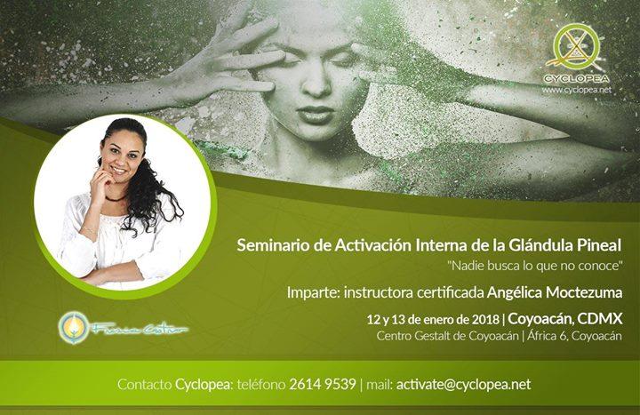 Seminario de Activacin Mtodo Cyclopea