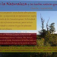 Ciclos de la Naturaleza y las hierbas nativas que los acompaan