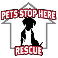 Pets Stop Here, Inc.