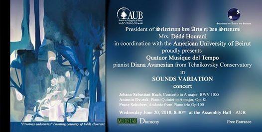 Sounds Variation concert