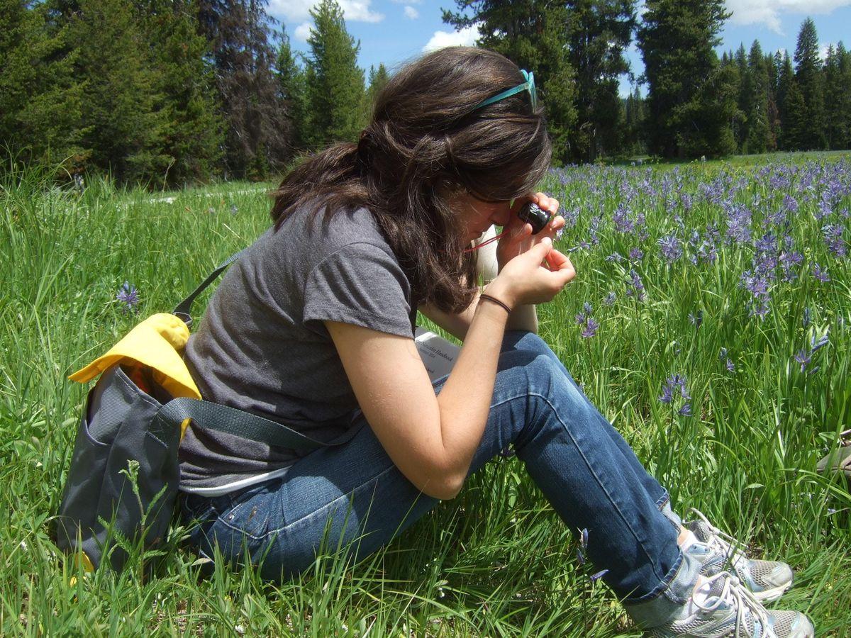 Mt Sac Spring 2020 Registration.Spring 2020 Montana Master Naturalist Class