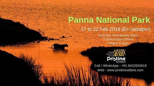 Panna National Park - Exclusive Photography Tour