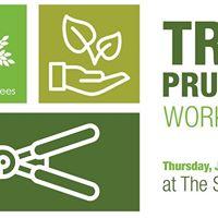 Tree Pruning Workshop
