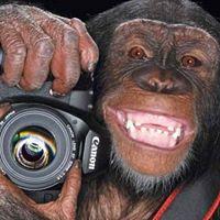 2.5 Months Photography Foundation Course ( Sat-Sun Classes)