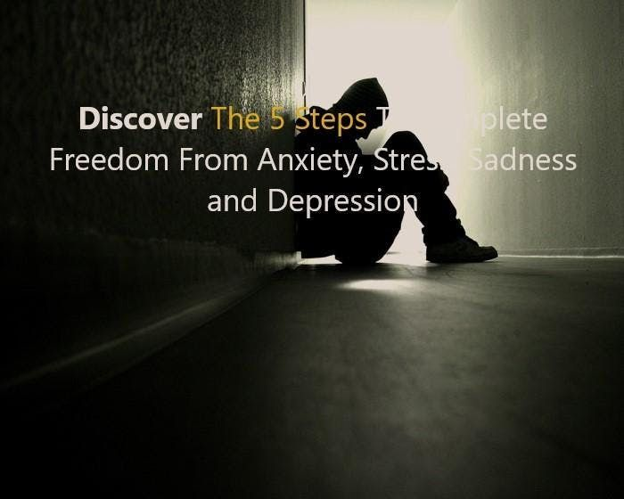 FREE 4 PROFESSIONALS 5 Steps to freedom from Anxiety Stress Sadness and Depression