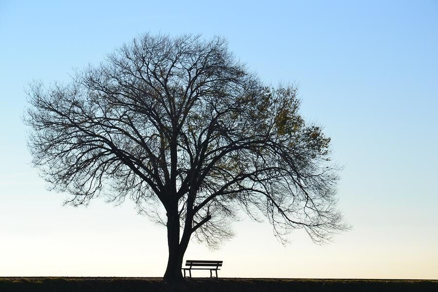 The Merry-go-Round of Life A different perspective on grief & loss