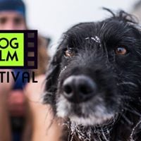 NY Dog Film Festival at Tivoli Cinemas
