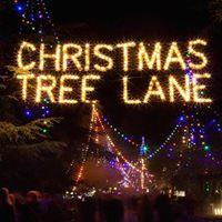 FAIHP walks Christmas Tree Lane