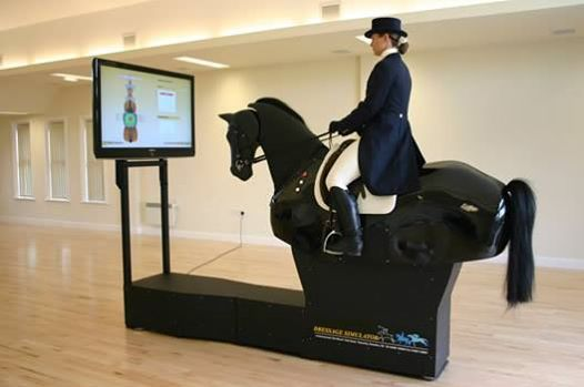 Introductory Mechanical Horse Session