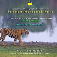 Impressions Photography Expedition to Tadoba National Park
