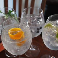 The Old House Gin School Guest Speaker Beefeater and Plymouth