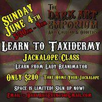 Taxidermy Class - Jackalopes