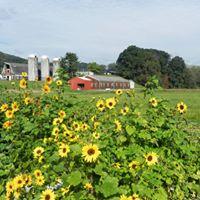 NC Alternative Crops & Organics Program