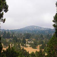 Hiking Qammoua (Akkar at 130Km)