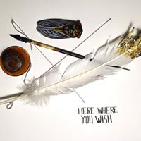 WMM talks w Ryan Wilks of Here Where You Wish  Lesley Pories