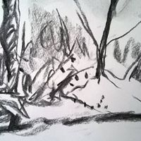 Creative Drawing Workshop with Fiona Carvell