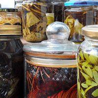 2n Sopar essencial elixirs tintures i olis essencials.