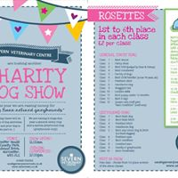 Fun Charity Dog Show At Worcester Woods Country Park