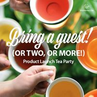 Steeped Tea VancouverBurnaby Product launch and Training