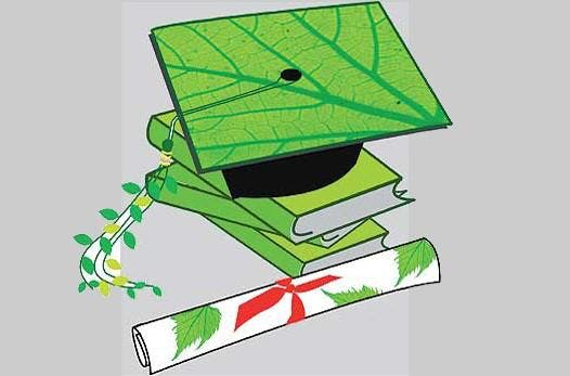 Hackney Education For Sustainability