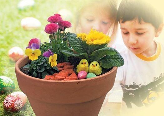 Make an Easter Garden 5