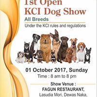 1st Open Dog Show