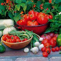 Spring Into Edible Gardening