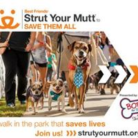 Furkids Strut Your Mutt 2017