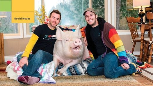 All About Esther the Wonder Pig