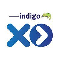 Indigo XP
