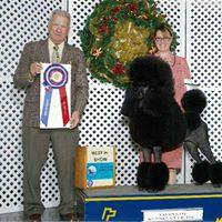 DOG SHOW - Savannah &amp Beaufort Kennel Clubs