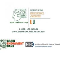 Ask the Experts - Miami Brain Bank