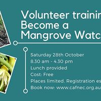 MangroveWatch Volunteer Training