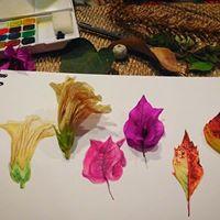Taller de ilustracin plantas silvestres De Cholula