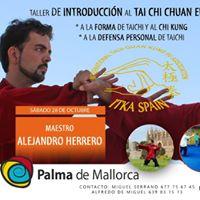 Chi Kung Forma y Defensa Personal del Tai Chi