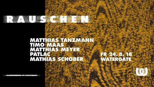 Rauschen w Matthias Tanzmann Timo Maas Matthias Meyer & more