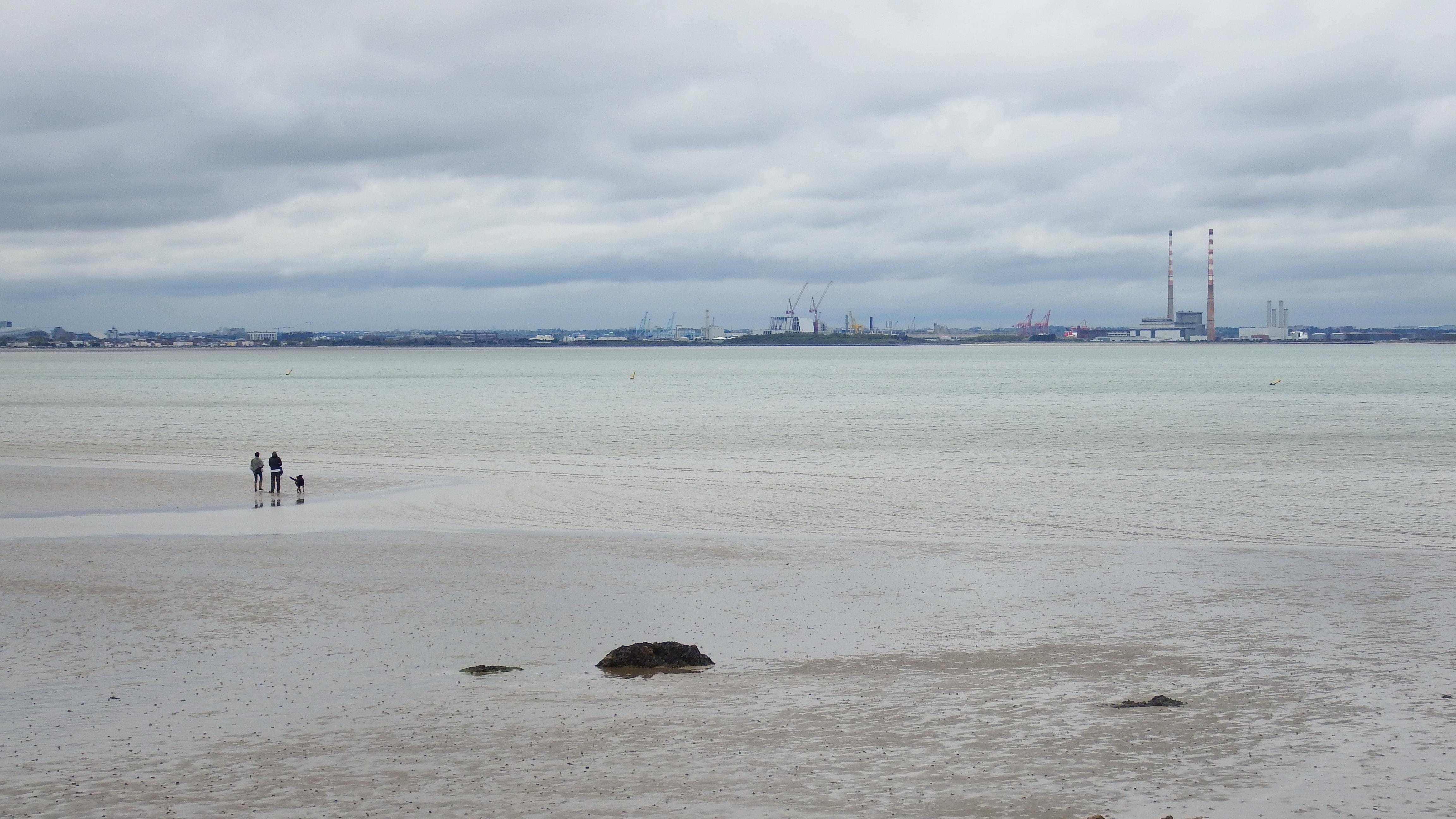 Dublin Bay Coastal Trek.