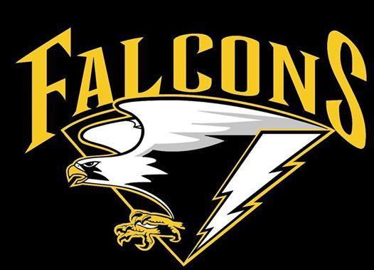Team Falcons - WAKO Dutch Open