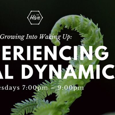 Growing Into Waking Up Experiencing Spiral Dynamics