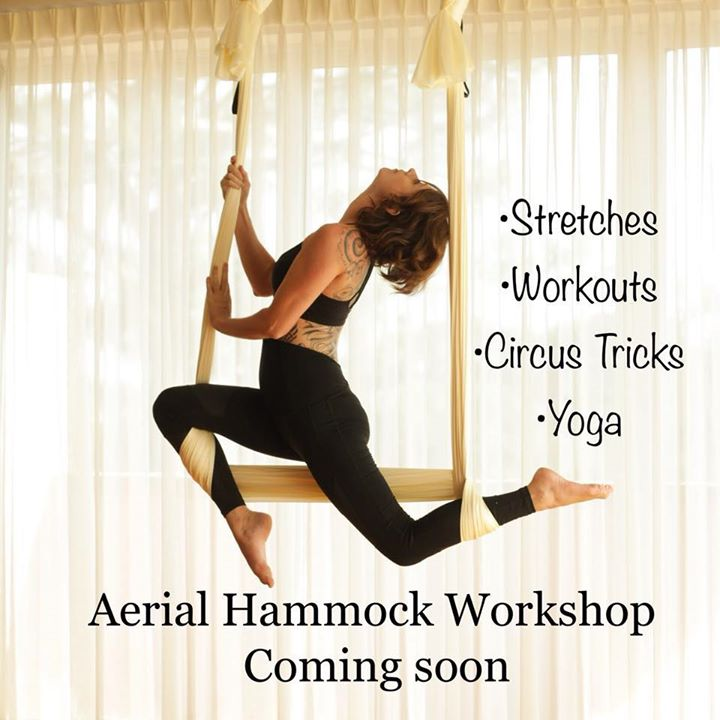 aerial hammock workshop aerial hammock workshop at the dance pointe tulsa tulsa  rh   allevents in