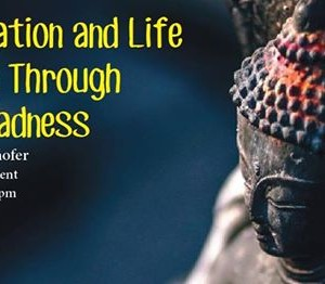 Meditation and Life Seeing Through Our Madness