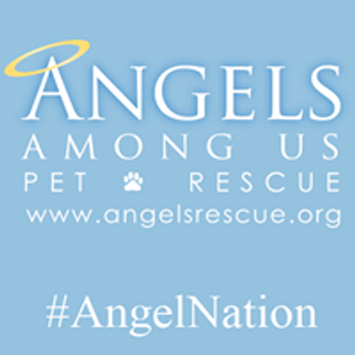 Angels Among Us Pet Rescue