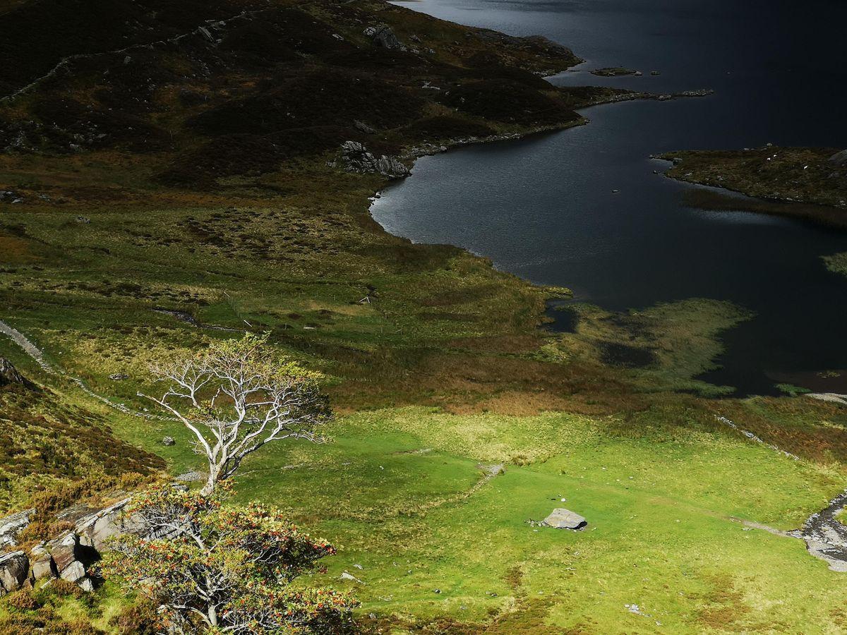 Nature of Snowdonia - Environmental workshop